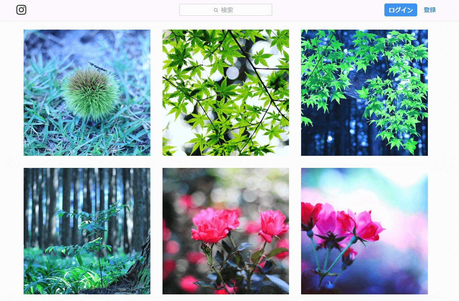 カメラマン_MidoriSatoさん